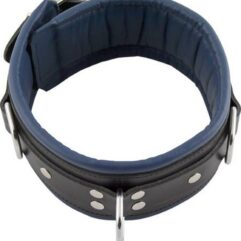 BDSM Slaves Padded collar